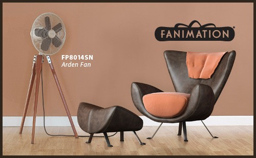 Shop Fanimation - Arden Fan
