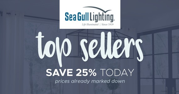 Shop Sea Gull Lighting