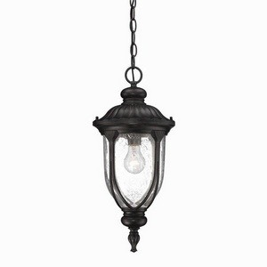 Acclaim Lighting-2216BC-Laurens - One Light Hanging Lantern  Black CoralFinish with Clear Seeded Glass