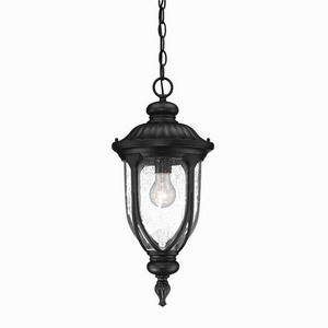 Acclaim Lighting-2216BK-Laurens - One Light Hanging Lantern  Matte BlackFinish with Clear Seeded Glass