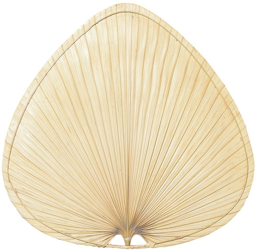 Fanimation Fans-PAP1-Accessory - 8 - 22 Inch Palisade Wide Oval Palm Blades  Natural Palm Finish