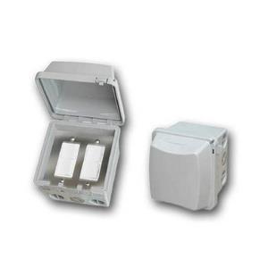 Accessory - Dual Duplex Switch Surface Mount & Gang Box 20 Amp Per Pole