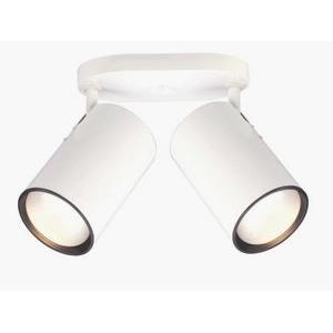 Two Light Straight Cylinder Lamp