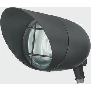 One Light Outdoor Flood with Photocell