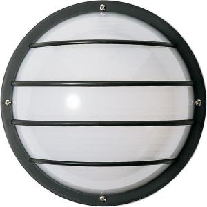 Two Light Round Cage Outdoor Wall Mount