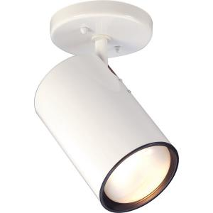 75W One Light Flush Mount