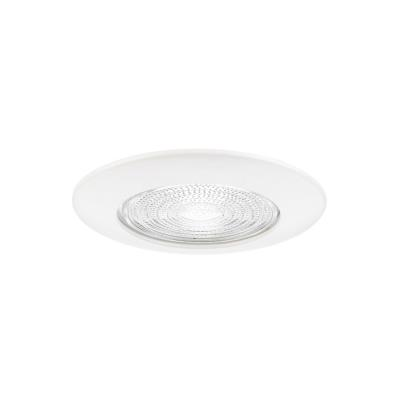 "Sea Gull Lighting 11055AT 6"" Fresnel Glass Shower Trim"