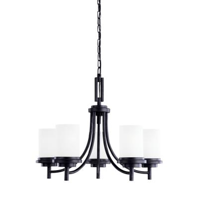Sea Gull Lighting 31661 Winnetka - Five Light Chandelier