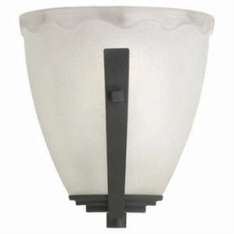 Sea Gull Lighting 41640-839 Single Light Wall Sconce