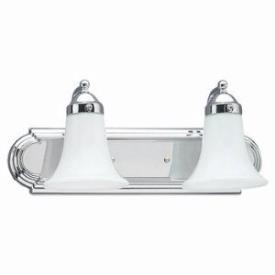 Sea Gull Lighting 4858-05 Two Light Wall/bath