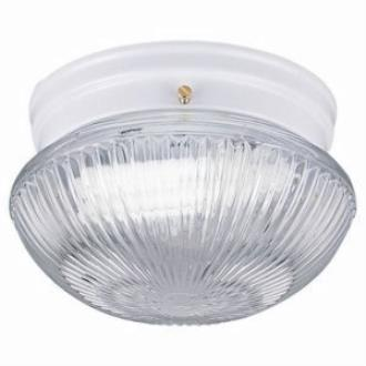 Sea Gull Lighting 5920BLE-15 Single-Light Close to Ceiling Fluorescent