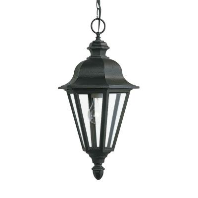 Sea Gull Lighting 6025-12 One Light Outdoor Pendant Fixture