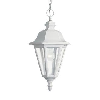 Sea Gull Lighting 6025-15 One Light Outdoor Pendant Fixture