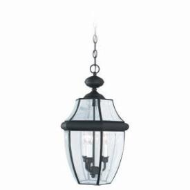 Sea Gull Lighting 6039-12 Three Light Outdoor Pendant Fixture