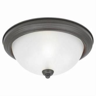Sea Gull Lighting 77064-814 Two-Light Del Prato Close To Ceiling