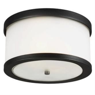 Sea Gull Lighting 7822402BLE-12 Bucktown - Two Light Outdoor Flush Mount