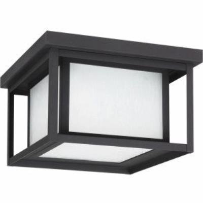 Sea Gull Lighting 79039BLE-12 Hunnington - Two Light Outdoor Flush Mount
