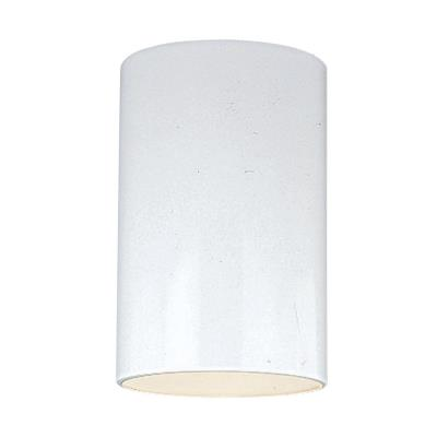 Sea Gull Lighting 8438-15 One Light Outdoor Ceiling Fixture