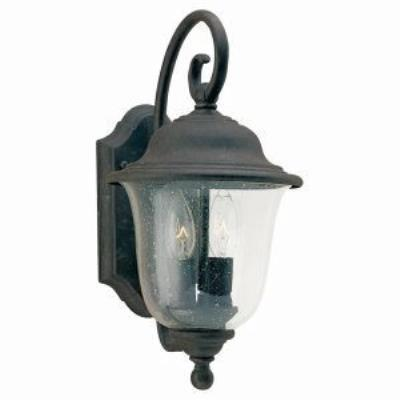 Sea Gull Lighting 8459-46 Two Light Lantern