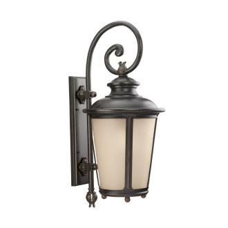 Sea Gull Lighting 88243-780 Single Light Wall Lantern