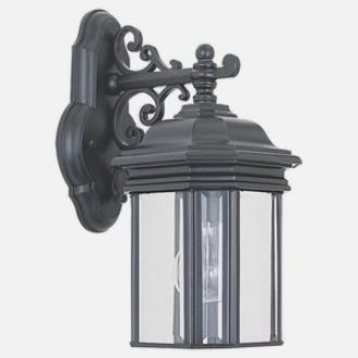 Sea Gull Lighting 8835-12 Outdoor One Light Wall Fixture