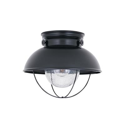 Sea Gull Lighting 8869-12 Outdoor Ceiling
