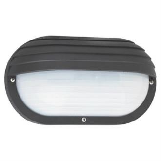 Sea Gull Lighting 89805BLE-12 Bayside - One Light Outdoor Wall Mount