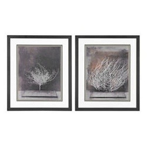 Sterling Industries-151-003/S2-Desert Form V VI - 28 Inch Fine Art Print Under Glass (Set of 2)  Washed Wood Finish