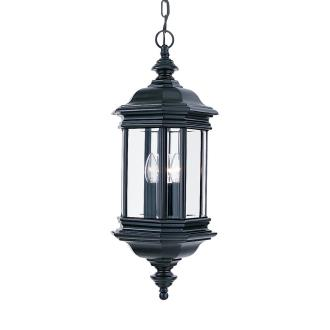 Sea Gull Lighting 6637-12 Three Light Outdoor Pendant Fixture