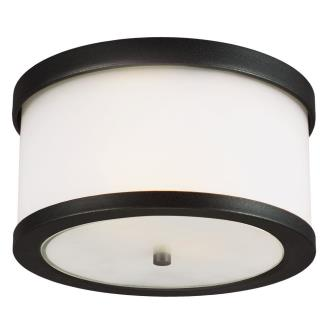 Sea Gull Lighting 7822402BLE-12 Bucktown - Two Light Outdoor Flush Mount