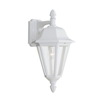 Sea Gull Lighting 8825-15 Single-light Outdoor Wall Lantern