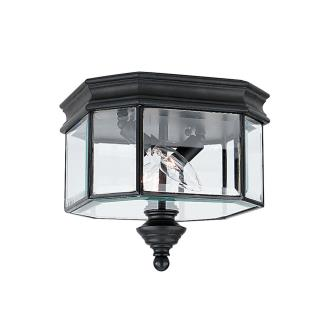 Sea Gull Lighting 8834-12 Single Light Outdoor Ceiling Fixture